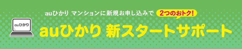 auひかり新スタートサポート(マンション)